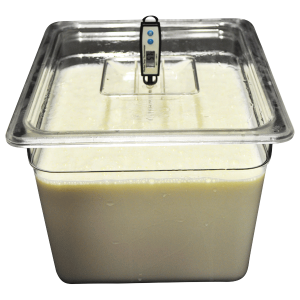 add-to-all-cheese-vat-and-lid-6-8-12-&-24-