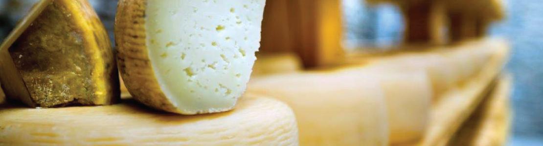 cheeseweb2015-1