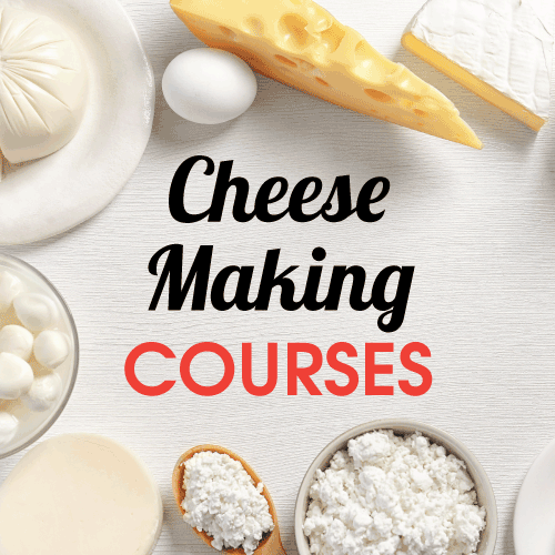 Cheese Making Courses